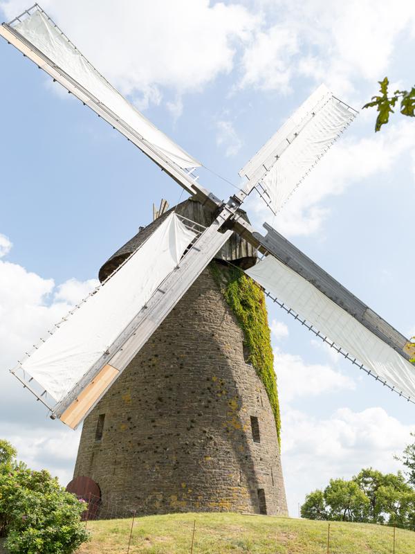 Eine der 43 Mühlen im Kreis Minden-Lübbecke